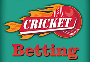 How to bet on cricket successfully?